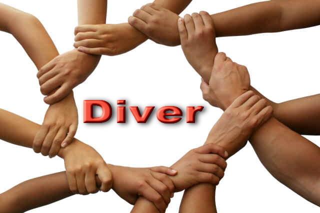 tags: blog , diversidad , diversificacion curricular , metodología
